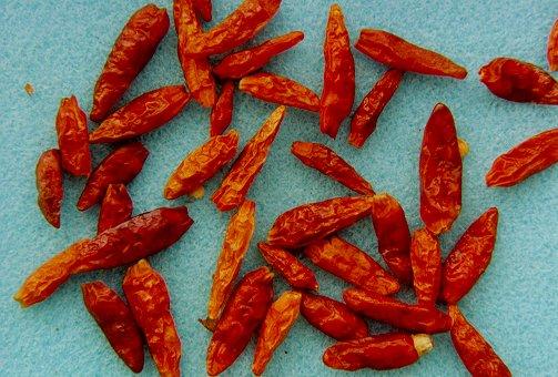 Chili........ die schärfste Kleinigkeit der Welt
